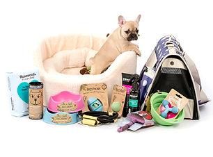 puppy-pack.jpg