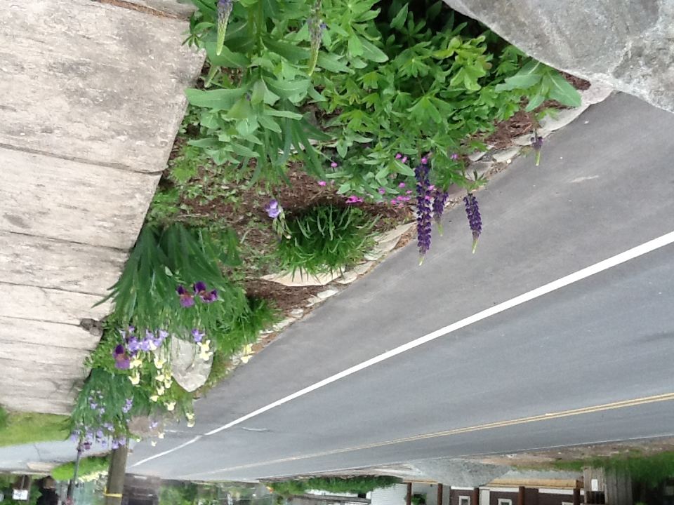 stanton corner spring 3