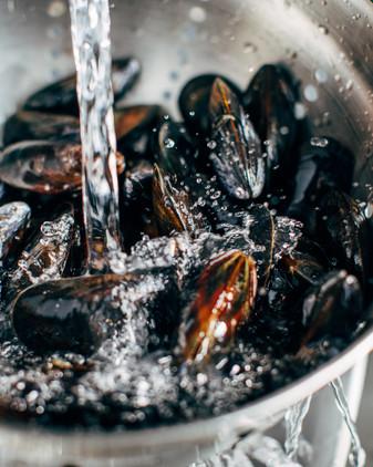 Mussels-3.jpg