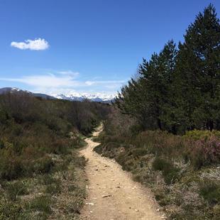 Somewhere on the way to Camino de Santiago, Spain