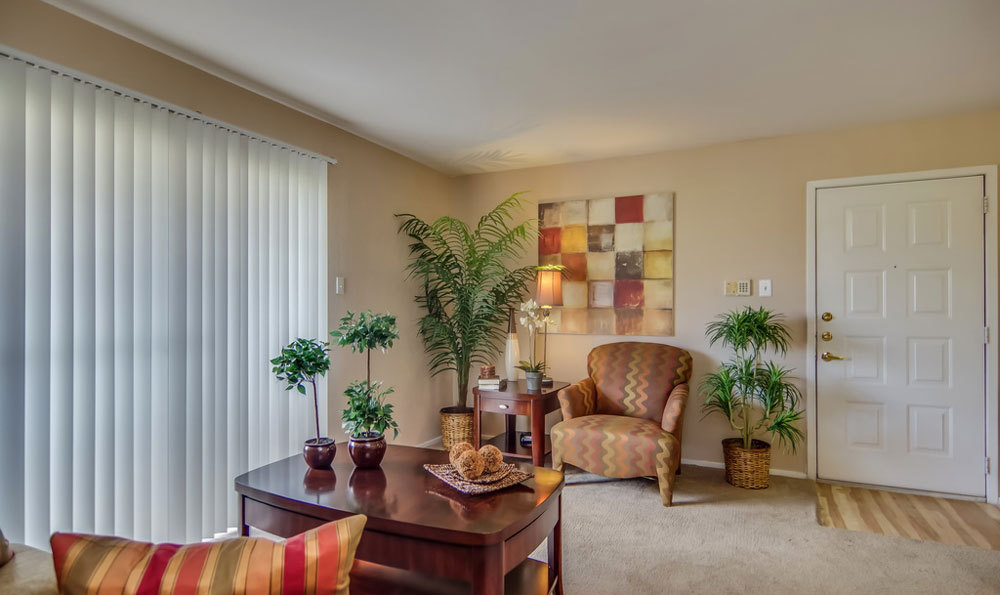 large-living-room-at-apartments-in-houston