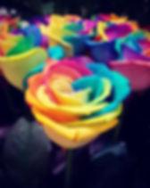 Rosa rainbow.jpg