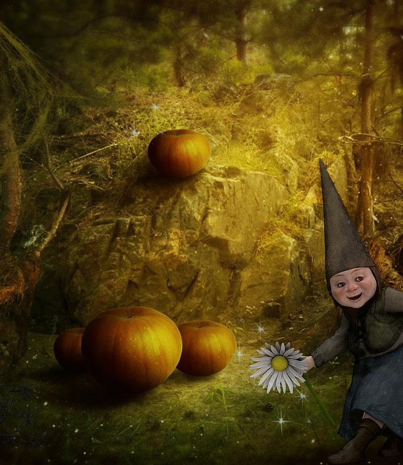 gnome-1462990_1920.jpg