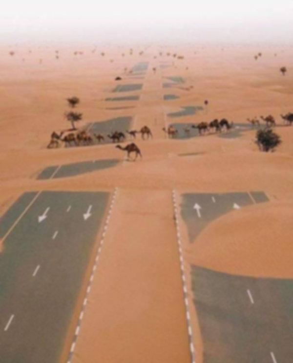 desert crossing.jpg