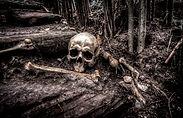 creepy-dark-fear-534590.jpg