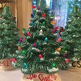 Large Christmas Tree Blue Spruce.JPG