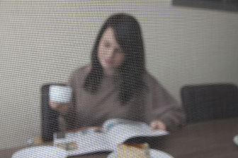 Установка москитной сетки в офисе
