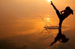 Kung Fu Silhouette.jpg
