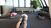 Plank Hold - Galo Fitness -Firmenfit