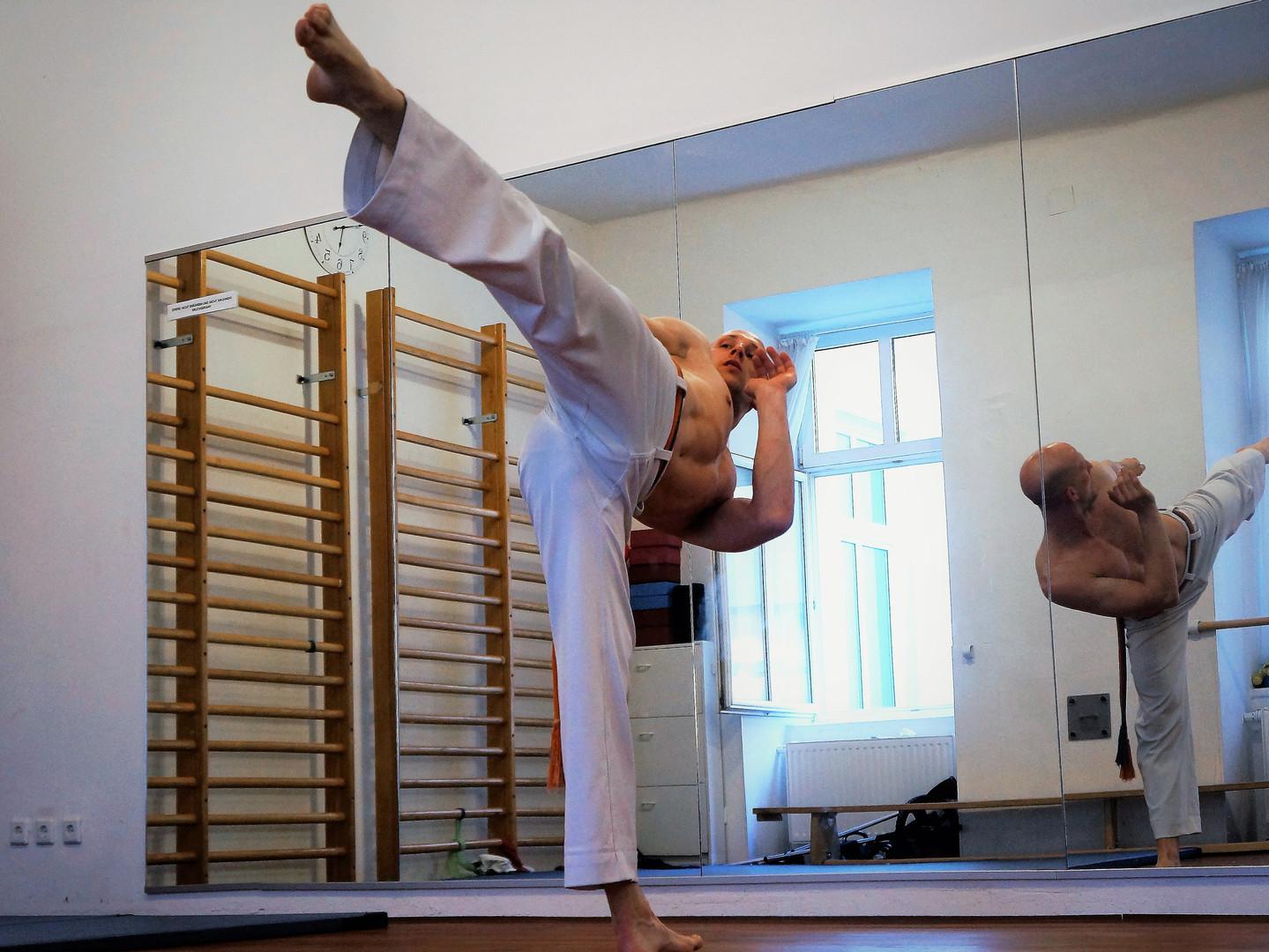 Martello MMA High Kick