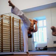 Capoeira Kick Martello