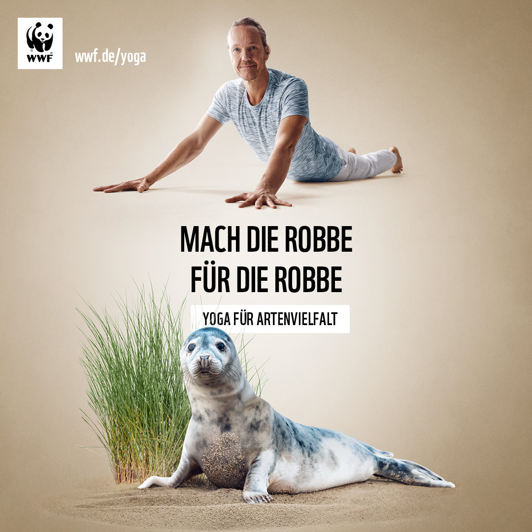 WWF-YogaFuerArtenvielfalt-1080x1080-Robb