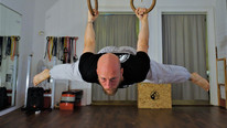Back_Lever_Gymnastic_Rings