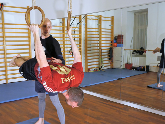 Assistant Back Lever
