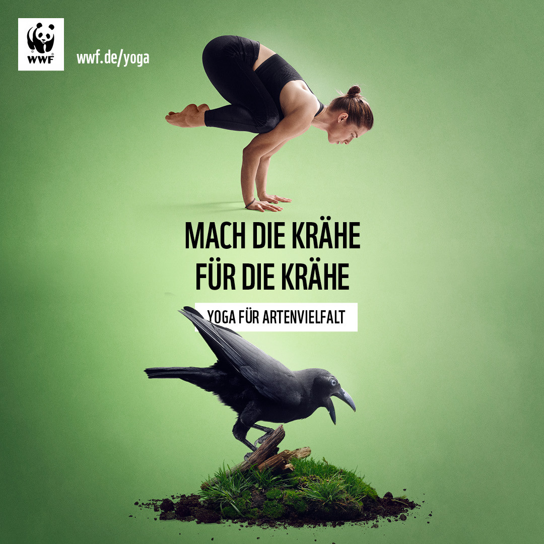 WWF-YogaFuerArtenvielfalt-1080x1080-Krae