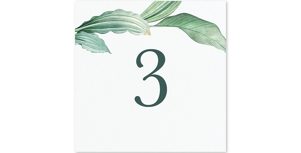Tropical Foliage - Table Number