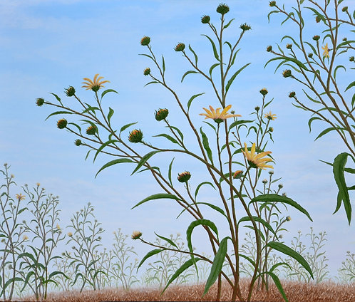 Sunflowers (2006)