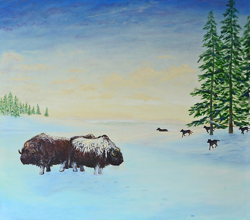 Musk Ox and Dogs (1989)