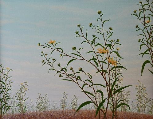 Sunflowers II (2006)