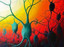 2012-Brains-II.JPG