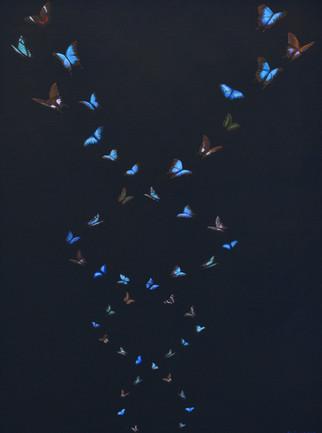 2009-Butterflies.jpg