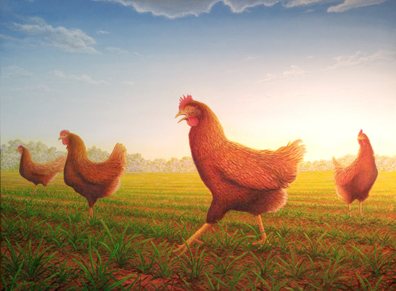 2017-Chickens-2a.jpg