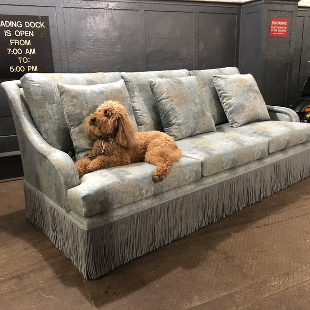 Custom Hyland sofa with Christopher Hylands dog enjoying the down seat cushions