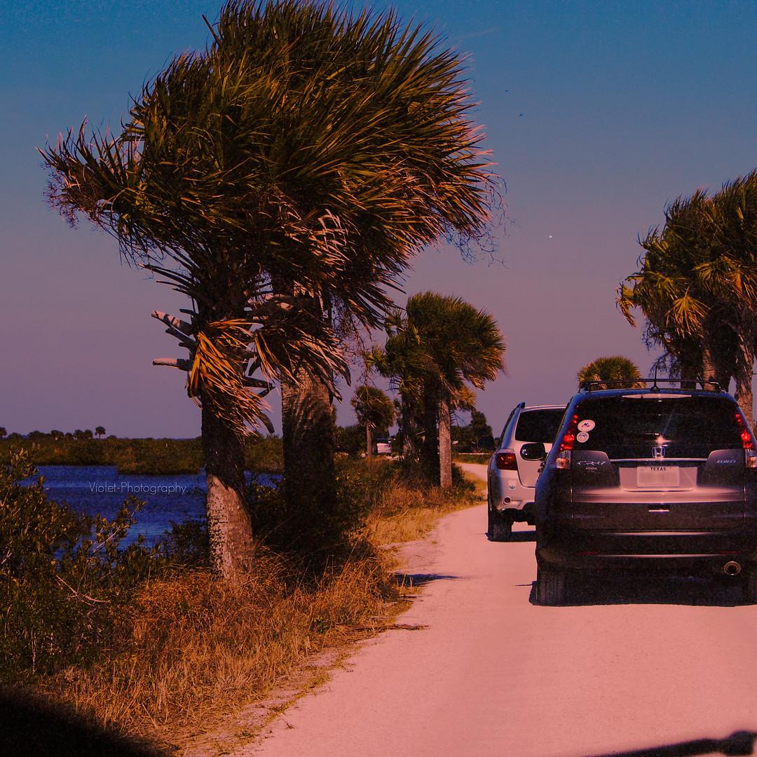 Florida. 2015.