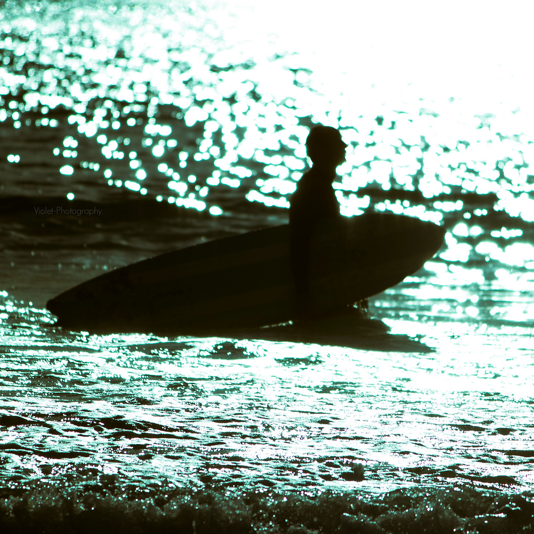 Venice Beach. 2013.