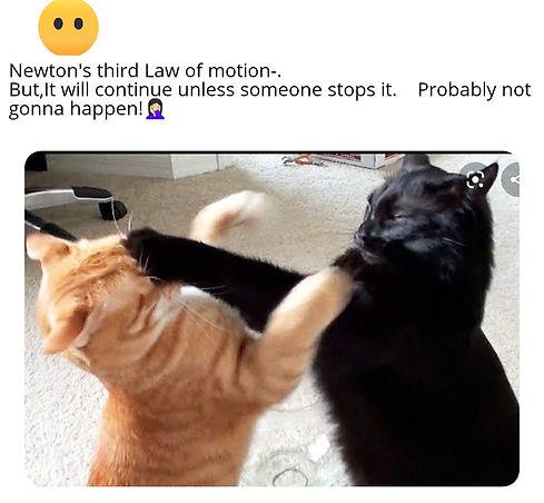 Using memes to make education fun