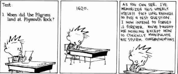 calvin%20and%20hobbes_edited.png