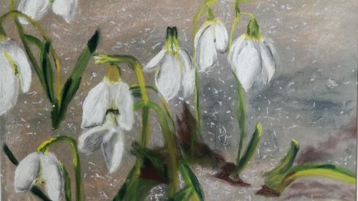 Das Kultivieren von Achtsamkeit ist wie das Aussäen von Samen, die zarte Blumen hervorbringen.