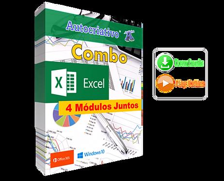 Combo Excel - 4 Módulos Juntos