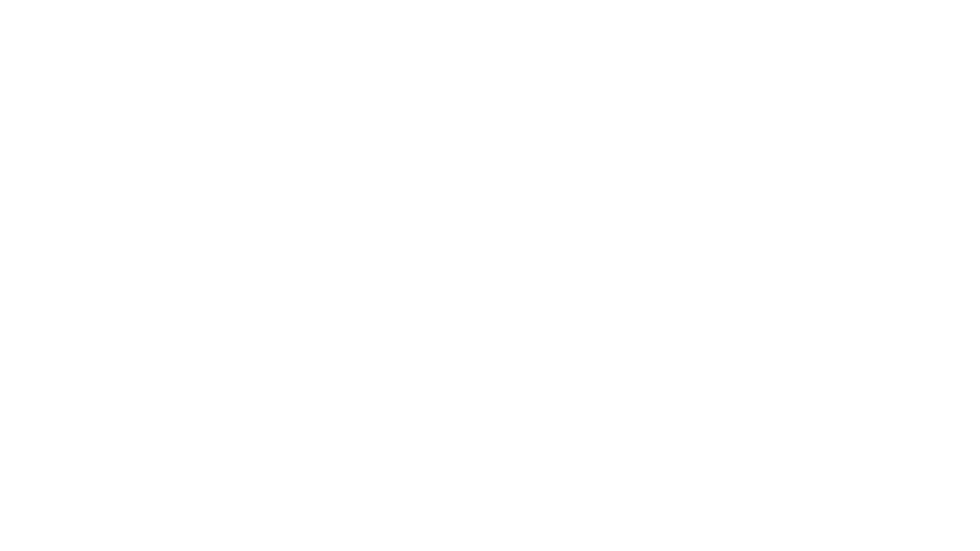 squiggle_1.png