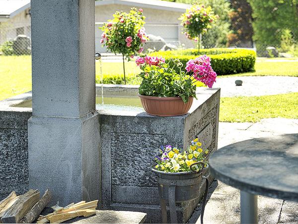 Pension Alpenheim Teufen, Garten, Brunnen, Blumen, Wiese, Rasen, Pflastersteine
