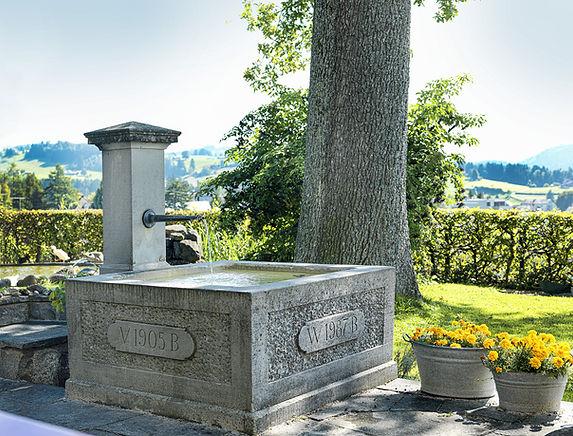 Pension Alpenheim Teufen, Garten, Brunnen, Blumen