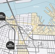 Triangulo de Desarrollo de Brooklyn
