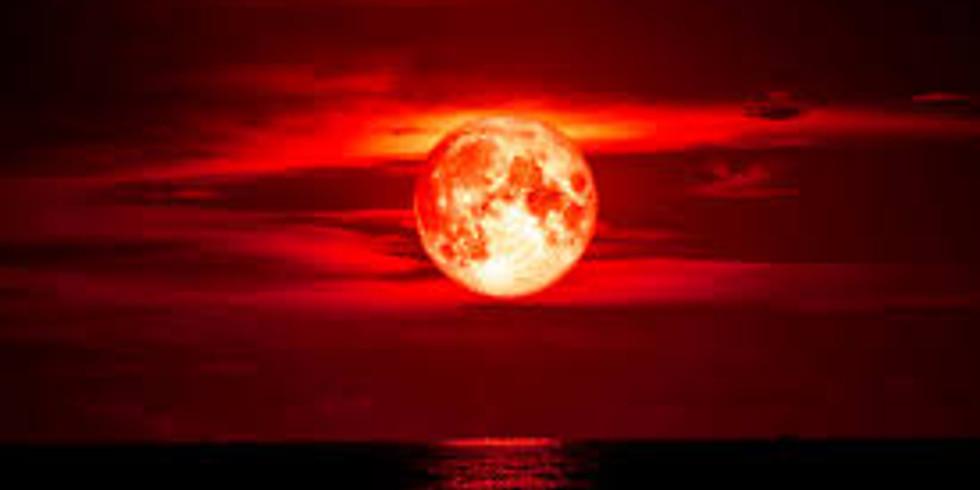 Flower Moon Past Life Regression