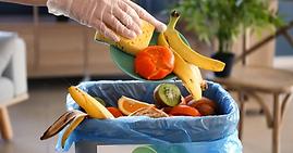 """""""Food waste"""" e """"food loss"""": le problematiche e l'impatto globale"""