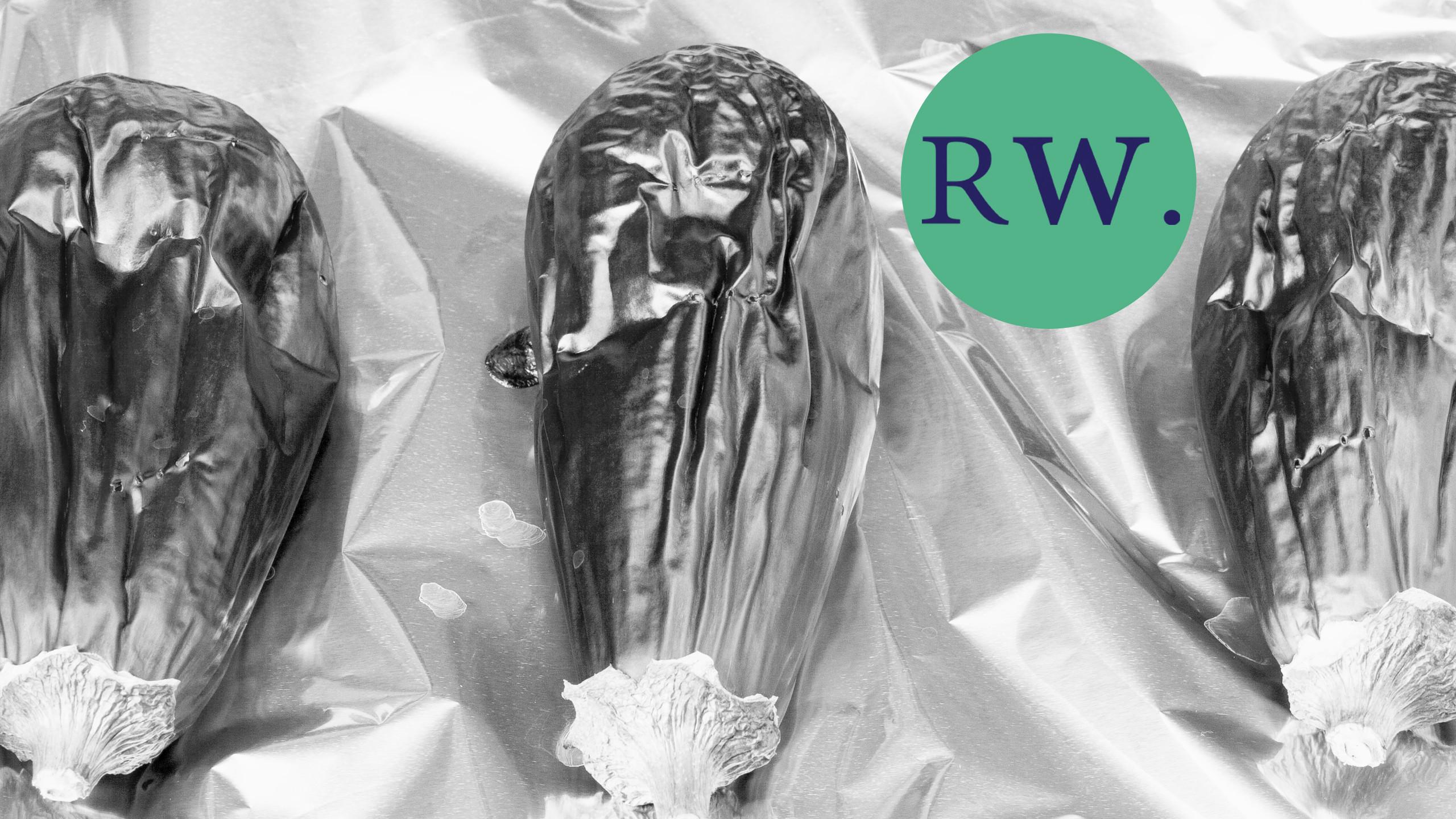 RW Blog Photo 8