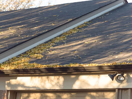 6 Reasons Autumn is a good Time to Replace Your Roof