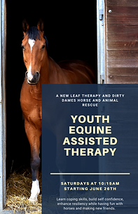 Equine teen group 6-26-21.png