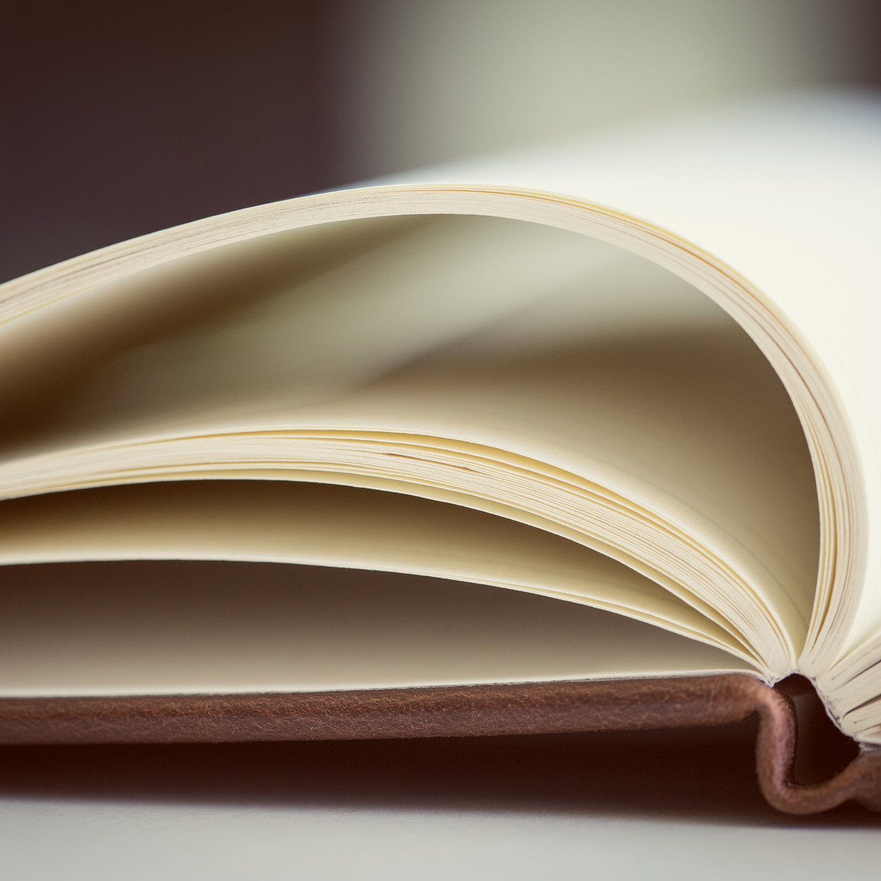 open hardcover book (no jacket)