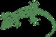 Okura Gecko.png