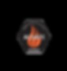 Acsafe logo.png