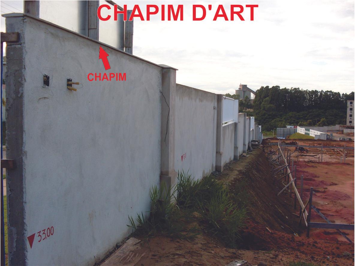 CHAPIM11052009-1.jpg