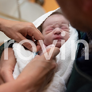 Viviana allattamento