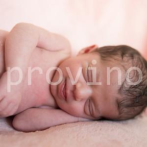 Elena Newborn