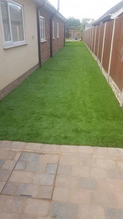 grass16