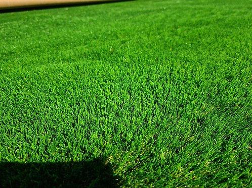 Blyth Premium Artificial Grass